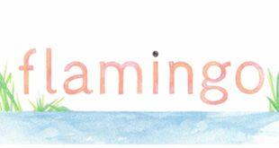 افزونه فلامینگو